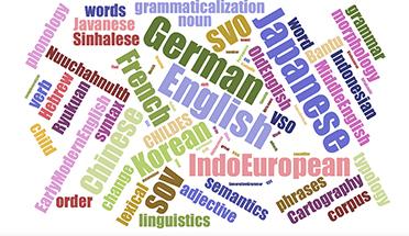 理論言語学と言語類型論と計量言語学の対話にもとづく言語変化・変異メカニズムの探求